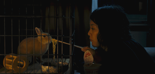 "The Zellner Bros. decision to have Bunzo the rabbit play an important part in Kumiko's life is partly inspired by their love for the book ""Watership Down."" Plus, neither fashioned Kumiko as a dog or a cat person."